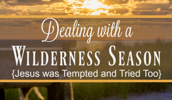 Dealing with a Wilderness Season {Jesus was Tempted and Tried Too}