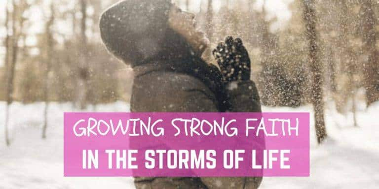 Growing Strong Faith in the Storms of Life