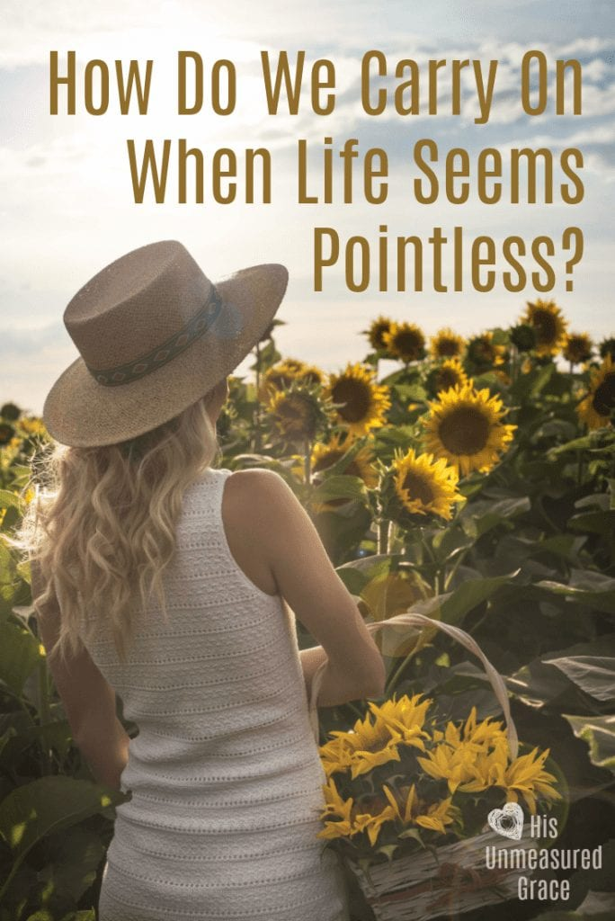 How Do We Carry on When Life Seems Pointless