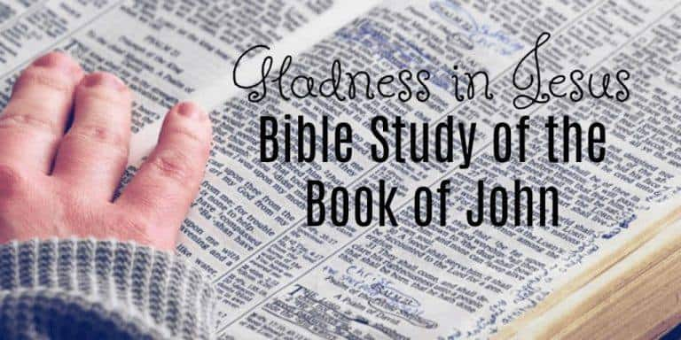 Gladness in Jesus Bible Study of the Book of John