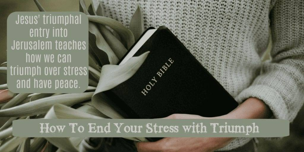 How To End Your Stress with Triumph