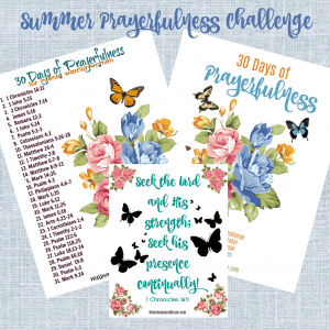 30 Days to Prayerfulness Challenge
