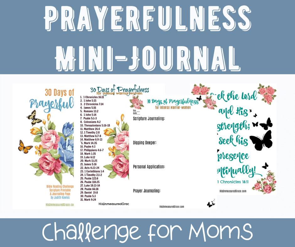 Prayerfulness Mini Journal