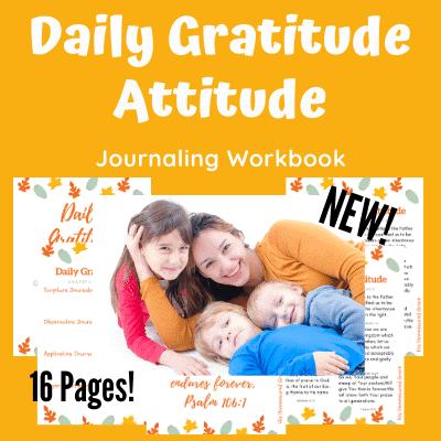 Daily Gratitude Attitude