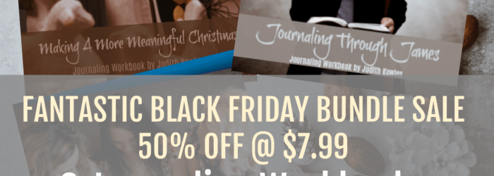 Black Friday Bundle Sale